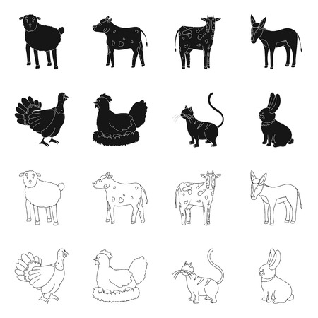 Isolated object of breeding and kitchen symbol. Set of breeding and organic vector icon for stock.