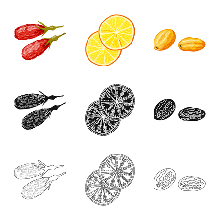 Isolated object of food  and raw  sign. Set of food  and nature   vector icon for stock. Illustration