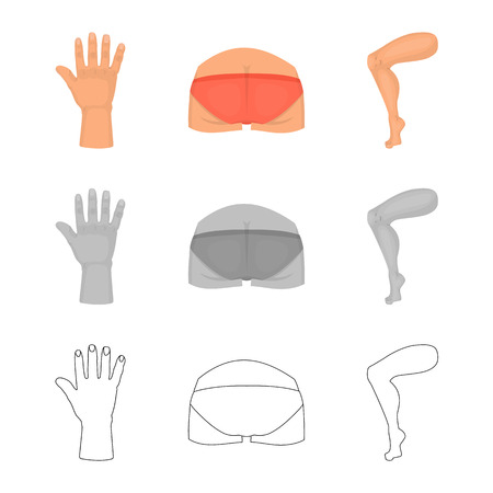 Vector design of body and part icon. Collection of body and anatomy stock vector illustration. Stock Vector - 122062959
