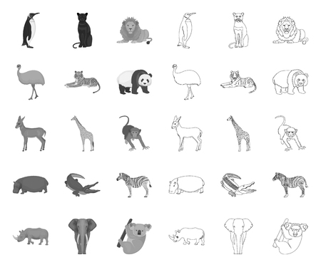 Different animals mono,outline icons in set collection for design. Bird, predator and herbivore vector symbol stock web illustration.