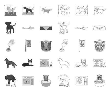 Pet mono,outline icons in set collection for design. Care and education vector symbol stock web illustration.