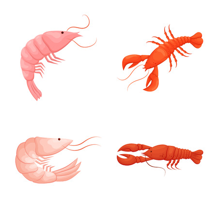 Isolated object of shrimp and crab sign. Collection of shrimp and sea stock vector illustration.