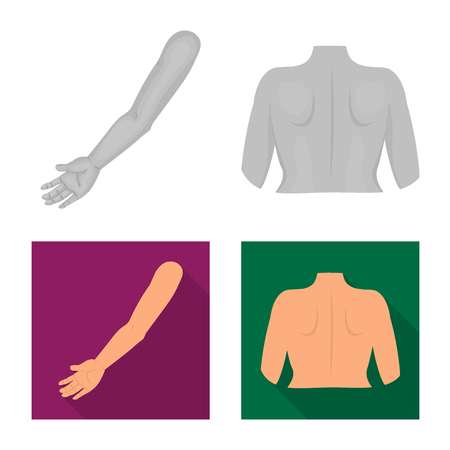 Isolated object of body and part icon. Collection of body and anatomy vector icon for stock. Illustration