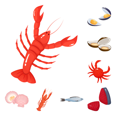 Vector illustration of food and sea icon. Collection of food and healthy stock vector illustration.