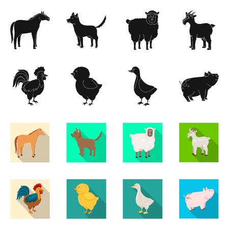 Isolated object of breeding and kitchen  sign. Set of breeding and organic  stock symbol for web.