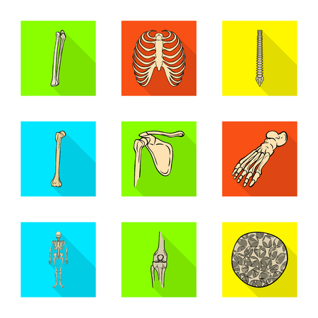 Isolated object of bone and skeleton symbol. Set of bone and human stock symbol for web.