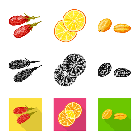 Isolated object of food  and raw. Collection of food  and nature   stock vector illustration.