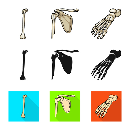 Vector illustration of medicine and clinic sign. Set of medicine and medical vector icon for stock. Illustration