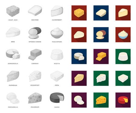 Different kind of cheese mono,flat icons in set collection for design.Milk product cheese vector symbol stock web illustration.