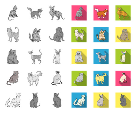 Breeds of cats mono,flat icons in set collection for design. Pet cat vector symbol stock web illustration. Stock Illustratie