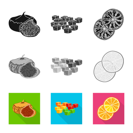 Isolated object of food  and raw  icon. Collection of food  and nature   stock symbol for web.