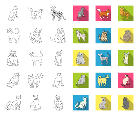 Breeds of cats outline,flat icons in set collection for design. Pet cat vector symbol stock web illustration.