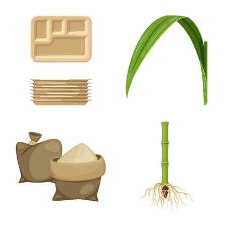 Vector illustration of sugarcane and cane icon. Collection of sugarcane and field vector icon for stock.