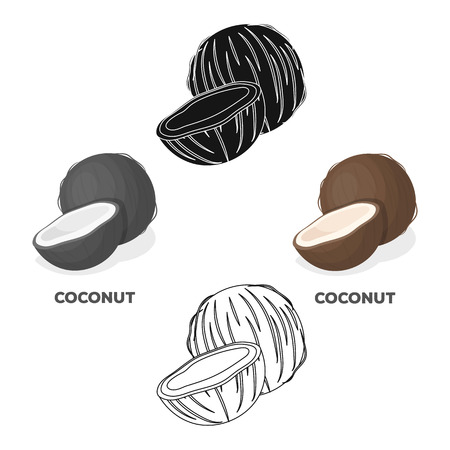 Coconat.Different kinds of nuts single icon in cartoon,black style vector symbol stock illustration.