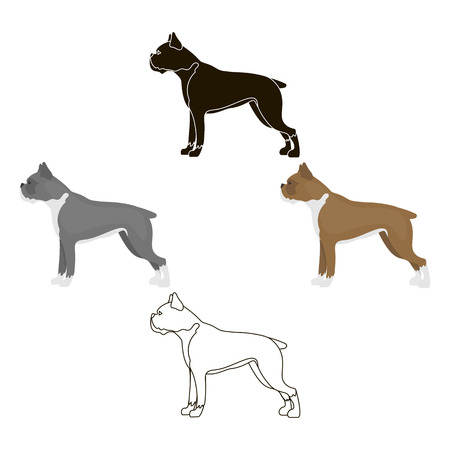 Boxer dog vector icon in cartoon,black style for web