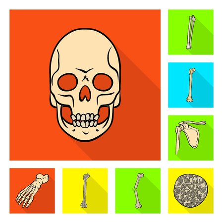 Vector design of bone and skeleton symbol. Collection of bone and human stock vector illustration. Illustration