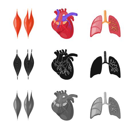 Vector illustration of biology and scientific symbol. Collection of biology and laboratory vector icon for stock. Ilustración de vector