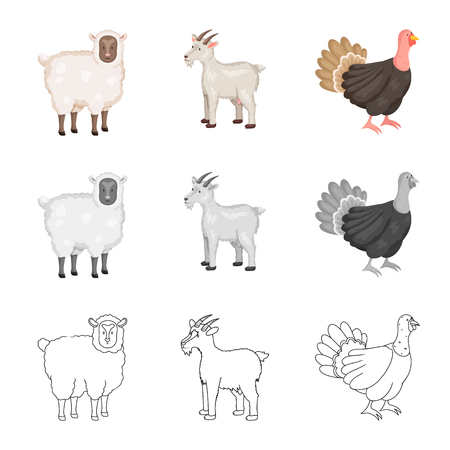 Vector design of breeding and kitchen. Set of breeding and organic  vector icon for stock. Zdjęcie Seryjne - 122830381
