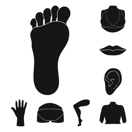 Vector illustration of body and part symbol. Collection of body and anatomy stock vector illustration. Ilustração
