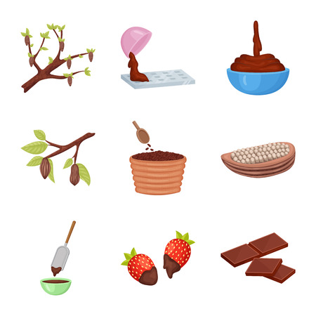 Isolated object of cocoa and beans. Collection of cocoa and sweetness stock vector illustration. 向量圖像