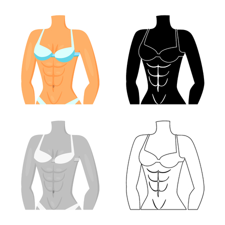 Vector design of fiber and muscular. Set of fiber and body  stock symbol for web.