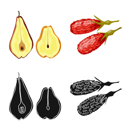 Isolated object of food  and raw  symbol. Collection of food  and nature   vector icon for stock. Stock Vector - 123043778