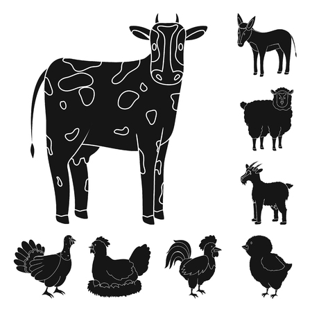 Vector illustration of ranch  and organic  icon. Collection of ranch  and food stock vector illustration. Stock Illustratie
