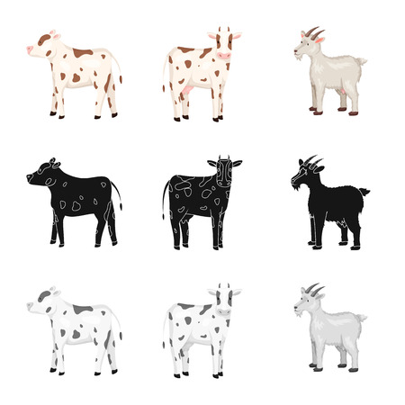 Vector design of breeding and kitchen  icon. Collection of breeding and organic  stock vector illustration.