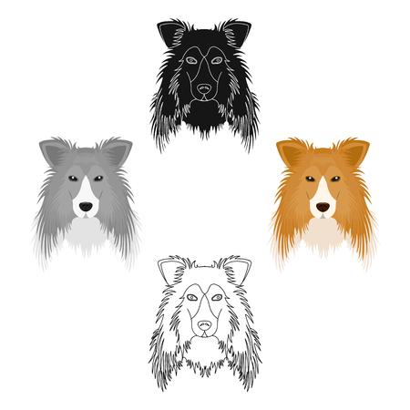 Dog, Collie breed, Scottish Shepherd. Muzzle Collie single icon in cartoon,black style vector symbol stock illustration web.