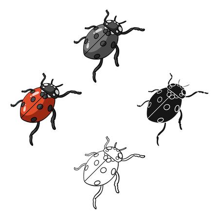 Ladybug is an arthropod.The insect beetle,ladybug single icon in cartoon,black style vector symbol stock isometric illustration web.