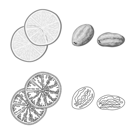 Vector illustration of food  and raw . Set of food  and nature   stock symbol for web.