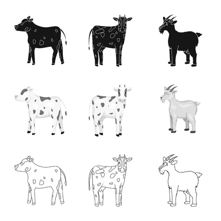 Vector illustration of breeding and kitchen  icon. Collection of breeding and organic  stock vector illustration.