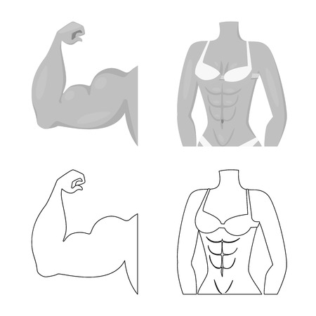 Isolated object of fiber and muscular sign. Collection of fiber and body  stock symbol for web. Illustration