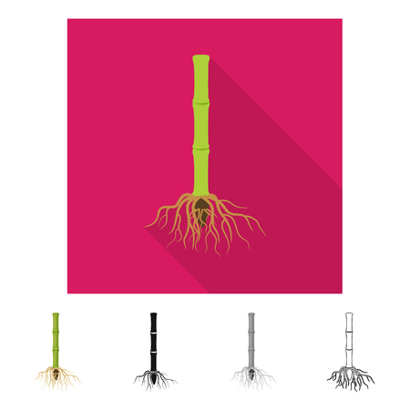 Vector illustration of root and system symbol. Collection of root and sprout vector icon for stock.