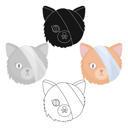 Sick cat with bandage on a head icon in cartoon,black design isolated on white background. Veterinary clinic symbol stock vector illustration.