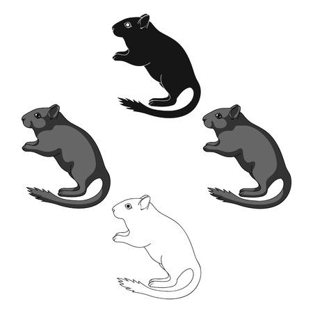 Gerbille grise. Icône unique d'animaux en dessin animé, illustration stock de symbole de vecteur de le style dessin animé. Vecteurs