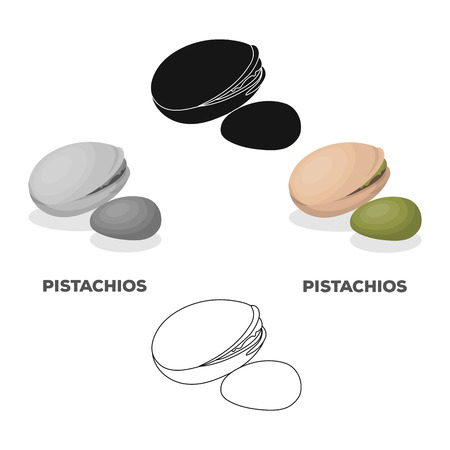 Green pistachio in the shell.Different kinds of nuts single icon in cartoon,black style vector symbol stock illustration. Ilustração