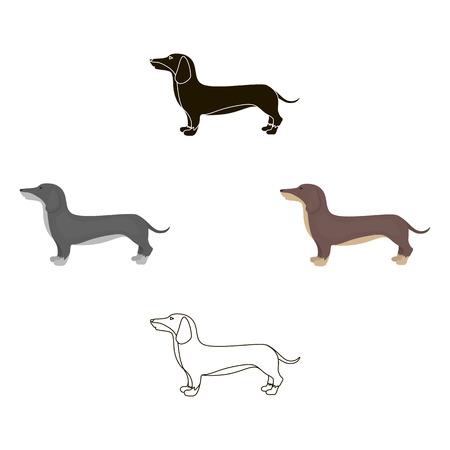 Dachshund vector icon in cartoon,black style for web