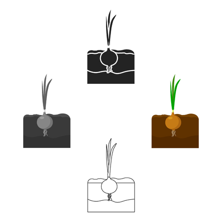 Onion icon cartoon,black. Single plant icon from the big farm, garden, agriculture cartoon,black.