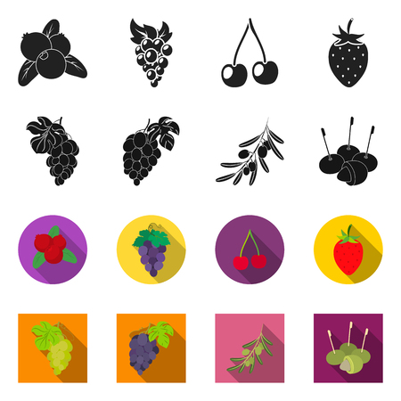 Vector design of berry and fruit. Collection of berry and redberry  vector icon for stock.