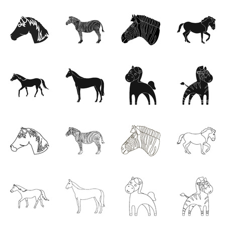 Isolated object of trot and running symbol. Set of trot and clipart stock vector illustration.