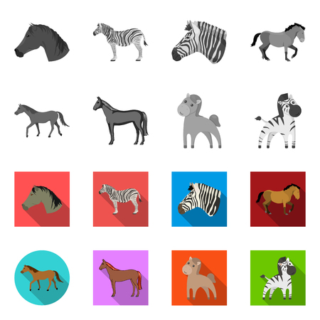 Isolated object of trot and running icon. Set of trot and clipart vector icon for stock. Archivio Fotografico - 124188264