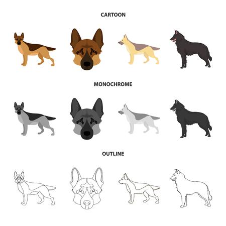 Vector design of sheepdog and sheltie icon. Collection of sheepdog and shepherd vector icon for stock.
