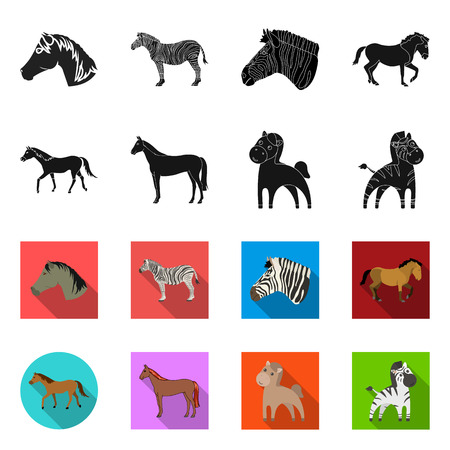 Isolated object of trot and running symbol. Collection of trot and clipart vector icon for stock. 版權商用圖片 - 124197251