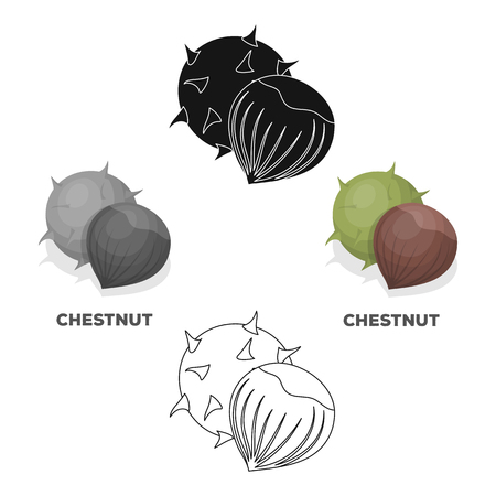 Chestnut.Different kinds of nuts single icon in cartoon,black style vector symbol stock illustration.