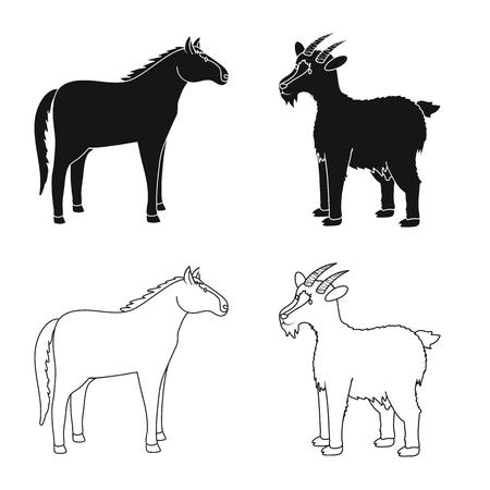 Vector illustration of breeding and kitchen  icon. Set of breeding and organic  vector icon for stock.