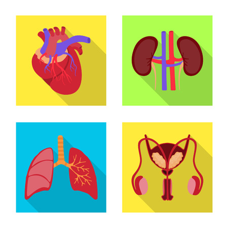 Vector design of human and health symbol. Collection of human and scientific stock vector illustration.