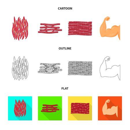 Vector illustration of fiber and muscular logo. Collection of fiber and body  stock vector illustration.