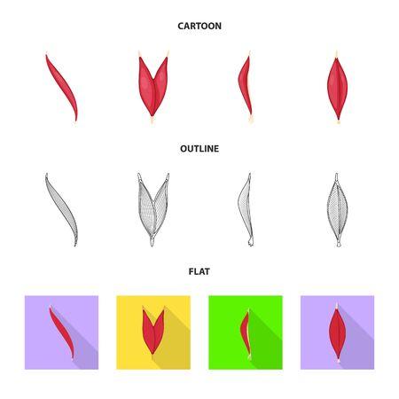 Vector illustration of fiber and muscular sign. Collection of fiber and body  stock vector illustration. Illusztráció