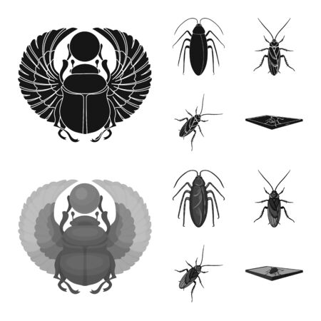 Vector illustration of insect and beetle logo. Collection of insect and halloween stock symbol for web.